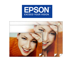 "Epson Exhibition Canvas Natural Gloss 13"" x 20' Roll S045410"
